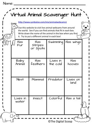 zoo field trip worksheet free worksheets library download and print worksheets free on. Black Bedroom Furniture Sets. Home Design Ideas