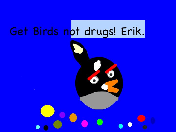 Bird_erik